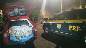 PRF apreende 200 quilos de pescado sem procedência em Paverama