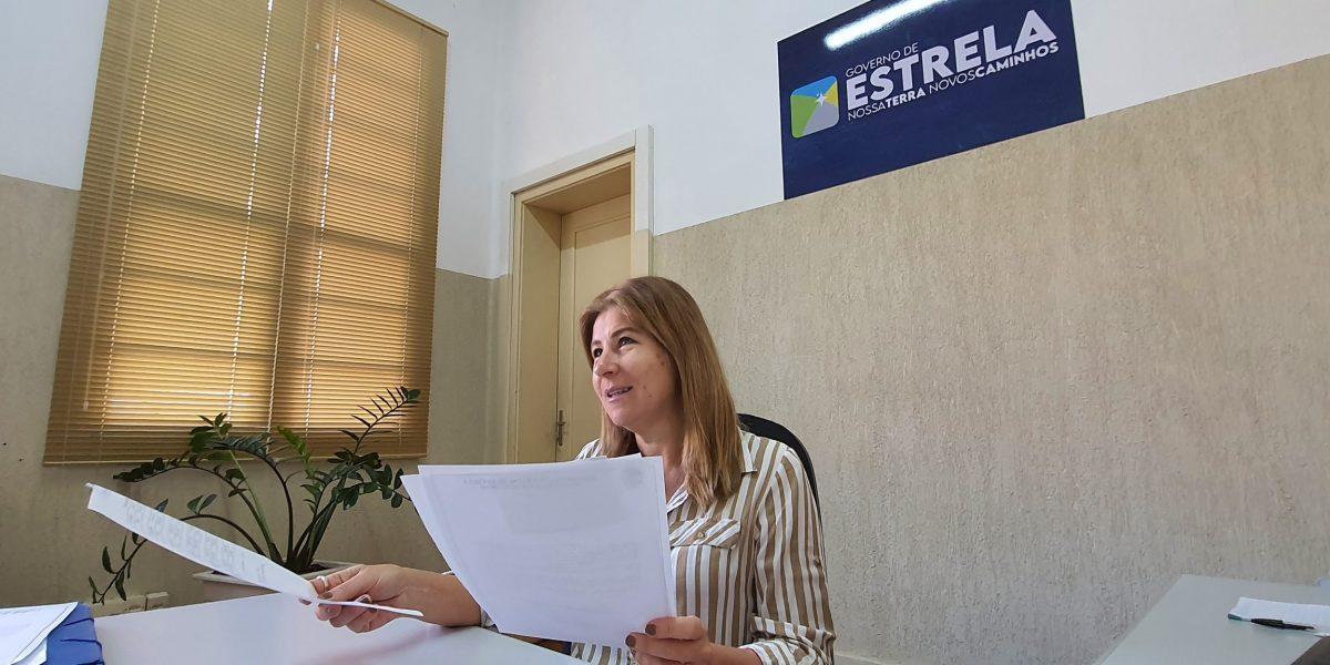 Secretária da Fazenda, Elaine Strehl (Foto: Divulgação)